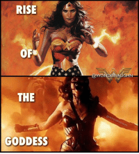 Amazon, God, and Memes: RISE  THE  GODDESS A LEAGUE OF ONE Similarly to the fabled Greek mythological firebird the Phoenix, from the fires of loss and pain, and witnessing the death of a loved one, Wonder Woman was reborn and emerged fully embracing her CINEMATIC GOD MODE abilities. * Princess Diana is a Demi-Goddess. She is an Amazon-Olympian hybrid and the daughter of Hippolyta, Queen of the Amazons and Zeus, King of the Greek Gods. *** @gal_gadot mywonderwoman girlpower women femaleempowerment MulherMaravilha MujerMaravilla galgadot unitetheleague princessdiana dianaprince amazons amazonwarrior manofsteel thedarkknight demigoddess goddess