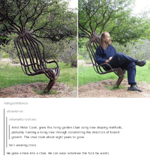 Crocs, Fuck, and Tree: risingconfidence  ultraviol-et:  urbanarboriculture:  Artist Peter Cook, grew this living garden chair using tree shaping methods  primarily training a living tree through constricting the direction of branch  growth. The chair took about eight years to grow  he's wearing crocs  He grew a tree into a chair. He can we whatever the fuck he wants Fair enough