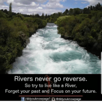 Future, Memes, and Focus: Rivers never go reverse  So try to live like a River  Forget your past and Focus on your future.  ⓕ/didyouknowpage 1 O @d.dyouknowpage