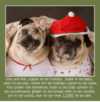 "Together...we are strong...together we can make a difference <3 <3 <3  This Christmas we say THANK YOU to all dog rescues by donating 100% of ALL PROFITS of our adorable cards and calendar for the next FOUR DAYS days (Dec 23,24,25,26)!!! >> www.grettasgirls.com << The EXCITING part??? YOU GET TO CHOOSE YOUR FAVORITE RESCUE !!!!  *** Be sure to write the name of the rescue you want us to donate to in the ""notes"" section when you order *** Head on over to www.grettasgirls.com and we will write a check to the rescue of your choice<3 <3 <3 Thank YOU for supporting pug rescue!!!! We love you! You are the... JOY TO OUR WORLD <3 <3 <3 Warmest hugs and Merry Christmas, The P+K family PS The rescue does not have to be for only pugs...: rls com  You are the...happy to my holiday, jingle in my bells,  wish to my star, home for my holiday, Candy to my Cane,  kiss under the mistletoe, holly to my jolly, winter to  my wonderland, ginger to my bread, milk to my Cookie,  joy to my world, star on my tree, LOVE of my life. Together...we are strong...together we can make a difference <3 <3 <3  This Christmas we say THANK YOU to all dog rescues by donating 100% of ALL PROFITS of our adorable cards and calendar for the next FOUR DAYS days (Dec 23,24,25,26)!!! >> www.grettasgirls.com << The EXCITING part??? YOU GET TO CHOOSE YOUR FAVORITE RESCUE !!!!  *** Be sure to write the name of the rescue you want us to donate to in the ""notes"" section when you order *** Head on over to www.grettasgirls.com and we will write a check to the rescue of your choice<3 <3 <3 Thank YOU for supporting pug rescue!!!! We love you! You are the... JOY TO OUR WORLD <3 <3 <3 Warmest hugs and Merry Christmas, The P+K family PS The rescue does not have to be for only pugs..."
