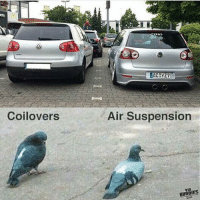 Air, Coilovers, and Air Suspension: RNY  Z7  Coilovers  Air Suspension  Vw  BUODIES