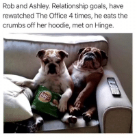 Cute, Funny, and Goals: Rob and Ashley. Relationship goals, have  rewatched The Office 4 times, he eats the  crumbs off her hoodie, met on Hinge. 42 Cute Animal Memes That Never Stop Being Funny