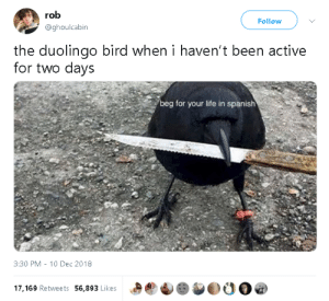 Life, Spanish, and Target: rob  Follow  @ghoulcabin  the duolingo bird when i haven't been active  for two days  beg for your life in spanish  3:30 PM  10 Dec 2018  17,169 Retweets 56,893 Likes gahdamnpunk: I feel seen