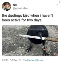 Iphone, Life, and Spanish: rob  @ghoulcabin  the duolingo bird when i haven't  been active for two days  beg for your life in spanish  23:30 10 Dec 18 Twitter for iPhone meirl