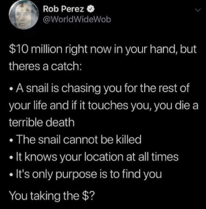 Dank, Life, and Death: Rob Perez  @WorldWideWob  $10 million right now in your hand, but  theres a catch:  . A snail is chasing you for the rest of  your life and if it touches you, you die a  terrible death  . The snail cannot be killed  . It knows your location at all times  . It's only purpose is to find you  You taking the $? Snails are faster than you think.