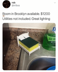 Memes, Windows, and Brooklyn: rob  @rribss  Room in Brooklyn available. $1200  Utilities not included. Great lighting 🤣Damn, If you add windows the price increases to $2400