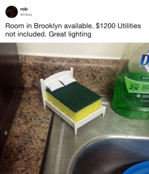 Apple, Bailey Jay, and Target: rob  @rribss  Room in Brooklyn available. $1200 Utilities  not included. Great lighting   ANT  DISH  apple tastefullyoffensive:  $1,200 is a steal. (via rribss)