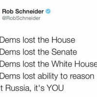 Rob bringing in the heat! 🔥🔥: Rob Schneider  @RobSchneider  Dems lost the House  Dems lost the Senate  Dems lost the White House  Dems lost ability to reason  t Russia, it's YOU Rob bringing in the heat! 🔥🔥