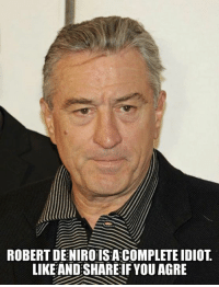 Memes, Idiot, and 🤖: ROBERT DENIRO IS A COMPLETE IDIOT  LIKE AND SHARE IF YOU AGRE