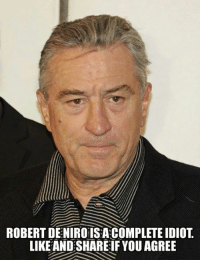 Memes, Idiot, and 🤖: ROBERT DENIRO IS A COMPLETE IDIOT  LIKE AND SHARE IF YOU AGREE