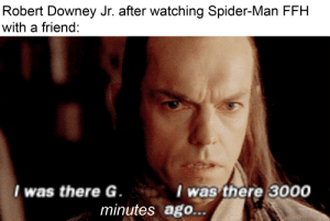 """""""I was there the day the strength of Terrence Howard failed"""": Robert Downey Jr. after watching Spider-Man FFH  with a friend:  I was there G.  I was there 3000  minutes ago... """"I was there the day the strength of Terrence Howard failed"""""""