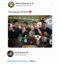 Chris Evans, Fresh, and Funny: Robert Downey Jr  @RobertDowneyJn  The gangs all here  Chris Evans  @ChrisEvans  @RobertDowneyJr Wow. 55 Funny Fresh Memes to Shove in Your Chucklebox