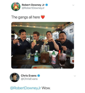 Chris Evans, Robert Downey Jr., and Target: Robert Downey Jr  @RobertDowneyJr  The gangs all here  Chris Evans  @ChrisEvans  @RobertDowneyJr Wow. marvelshitpostsfromaqueer:  Wow rob. Wow.