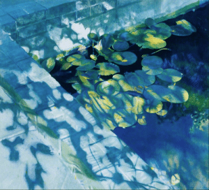 robert-hadley:NORMAN ROWE - (British, b. 1929) - Water Lilies, 1979-80. Oil on canvas: robert-hadley:NORMAN ROWE - (British, b. 1929) - Water Lilies, 1979-80. Oil on canvas