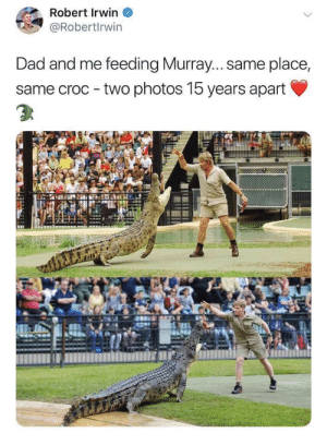 I'm not crying you are: Robert Irwin  @Robertlrwin  Dad and me feeding Murray... same place,  same croc two photos 15 years apart I'm not crying you are