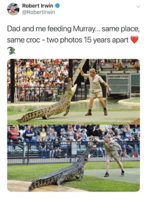 positive-memes:  He would be proud.: Robert Irwin  @Robertlrwin  Dad and me feeding Murray... same place,  same croc two photos 15 years apart positive-memes:  He would be proud.