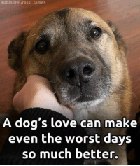 Always!: Robin DeGrassi James  A dog's love can make  even the worst days  so much better. Always!