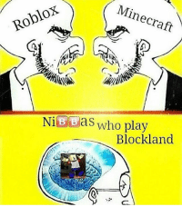 Roblox Minecraft Bbas Who Play Blockland This Is Just Facts