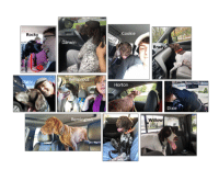 """Dogs, Memes, and Thanksgiving: Rock  Cookie  Darwin  Brad  Bellsprout  sy  Horton  Dixie  Remin  Willow Today is Thanksgiving and it's also """"Go For A Ride Day."""" So we've combined the two celebrations and are giving thanks for our Transport Coordinator, Heather!  Over the last 6 years Heather coordinated 175 transports for SEGSP – that's roughly 30 transports each year (42 in 2017) facilitating freedom rides, foster home changes and adoptions.  Thank you Heather and thank you to all of our transport volunteers who spend their spare time helping these dogs.  We wish everyone a very happy Thanksgiving!"""