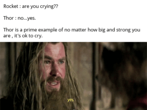 Are you crying?: Rocket are you crying??  Thor no...yes.  Thor is a prime example of no matter how big and strong you  are , it's ok to cry.  yes. Are you crying?