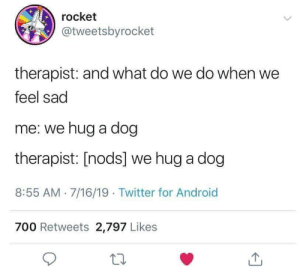 Feel Sad: rocket  @tweetsbyrocket  therapist: and what do we do when we  feel sad  me: we hug a dog  therapist: [nods] we hug a dog  8:55 AM 7/16/19. Twitter for Android  700 Retweets 2,797 Likes