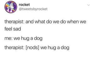 Feel Sad: rocket  @tweetsbyrocket  therapist: and what do we do when we  feel sad  me: we hug a dog  therapist: [nods] we hug a dog