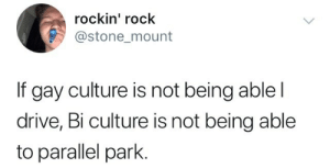 Pan culture not being able to do anything hhhh: rockin' rock  @stone mount  If gay culture is not being ablel  drive, Bi culture is not being able  to parallel park. Pan culture not being able to do anything hhhh
