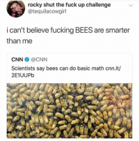 cnn.com, College, and Fucking: rocky shut the fuck up challenge  @tequilacowgirl  i can't believe fucking BEES are smarter  than me  CNN @CNN  Scientists say bees can do basic math cnn.it/  2E1UUPb I used to tutor math in high school and all the way through college and then I became an accountant so I actually love math!! Hahaha 🤷🏼‍♀️🕺🏼