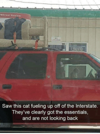 Memes, Saw, and Back: ROclean Gasolines  NO  LOITERING  SLE  Saw this cat fueling up off of the Interstate.  They've clearly got the essentials  and are not looking back