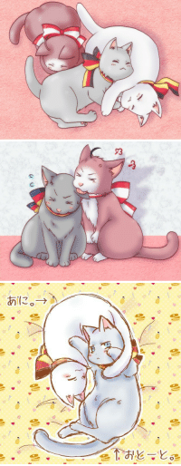 Target, Tumblr, and Blog: roderich-edelfine:  annaliese-edelstein: more Nekotalia c:  from Austria, Prussia and Germany Enjoy 3   【ヘタリア】だまこ【ねこたりあ】Pixiv ID: 14872866Member: 三枚肉。@修行中!