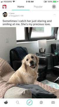 Aww, Love, and Precious: ROGERS  3:18 AM  Home  Popular  r/aww  u/twiggbert. 4h  Sometimes I catch her just staring and  smiling at me. She's my precious love <p>Wholesome overload send backup!!</p>