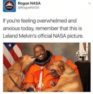 Rogue: Rogue NASA  @RogueNASA  NASA  If you're feeling overwhelmed and  anxious today, remember that this is  Leland Melvin's official NASA picture.