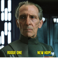 Finn, Memes, and Rogue: ROGUE ONE  SWHUB  NEW HOPE! What do you think of Tarkin's CGI in Rouge One? 👉Tag a friend💯 Admin: Finn, SWHub Photo Credit: @messypandas