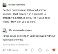 Animals, Best Friend, and Animal: roman-sunshine  Beetles compromise 25% of all animal  species. That means 1 in 4 animals is  probably a beetle. Is it you? Is it your best  friend? How can you be sure?  official-canadianjesus  Ringo could be living in your backyard without  you even knowing  Source: roman-sunshine  451,581 notes > 。