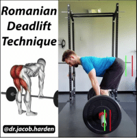 Memes, Control, and Best: Romanian  Deadlift  Technique p  @dr jacob harden 2 WAYS TO DO THE ROMANIAN DEADLIFT There are a couple ways to perform a Romanian Deadlift. One has you sit as far back as possible into your heels and the other keeps the weight forward into the midfoot.👣⚖ . ☝In the first version, the exaggerated motion of sitting back allows you to counterbalance the load on the bar to help you hold your position, which lets you lift heavier weight. This is fine if you can control the weight and hold a neutral spinal position and may be the only way for very flexible people feel a stretch in the posterior chain. . ✌The latter version still uses a hip hinge, but does not use as large of a shift backwards. Instead, grip the ground with your toes and feet and keep your weight in your midfoot throughout the movement. . You can still achieve the same ROM in the glutes and hamstrings, but you remove the counterbalanced leverage. This means you will have to use a lighter weight, but you will rely solely on muscular effort to control your positions.💪 . I have also found that the lighter load makes it easier to control your spinal positioning so it is my preferred method for those that find themselves getting back pain with this movement.🤕 Try them out, see what you feel best with, and go get yourselves strong! Tag a friend and share the wealth! MyodetoxOrlando Myodetox
