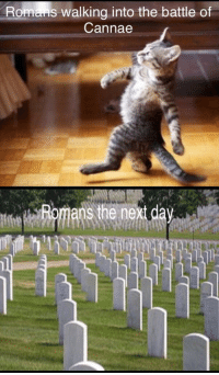 History, Hope, and Next: Romans walking into the battle of  Cannae  Romans the next day