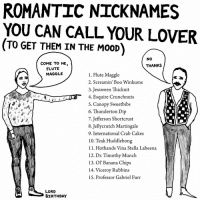 Memes, 🤖, and Chips: ROMANTIC NICKNAMES  YOU CAN CALL YOUR LOVER  (TO GET THEM IN THE MooD)  NO  COME TO ME  THANKS  FLUTE  MAGGLE  1. Flute Maggle  2. Screamin' Boo Winkums  3. Jessween Thicknit  4. Esquire Crunchnuts  S. Canopy Sweetbibs  6. Thunderton Dip  7. Jefferson Shortcrust  8.Jellycrutch Martingale  9. International Crab Cakes  10. Teak Huddlebong  11. Hothands Vina Stella Labeena  12. Dr. Timothy Munch  13. ol' Banana Chips  14. Viceroy Rubbins  15. Professor Gabriel Furr  LORD  BIRTHDAY some fun news: 1) I've signed on to do a book with Andrews McMeel Publishing (The Oatmeal, rubyetc., etc). Coming early 2018! 2) My stuff is now on GoComics.com, including an interview with me. Go and see! And subscribe for free! 3) I have prints now available at lordbirthday.com. It's true!.... art drawing illo illustrations illustrator ink sketch humor comedy cartoon instaart kunst comics valentines