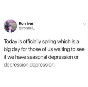 Memes, Depression, and Spring: Ron Iver  @ronnui  Today is officially spring which is a  big day for those of us waiting to see  if we have seasonal depression or  depression depression. 👀