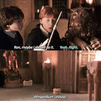 first day back at school ugh What pet would you have at Hogwarts?🦉: Ron, maybe should do it.  Yeah. Right.  Wingardium Leviosa! first day back at school ugh What pet would you have at Hogwarts?🦉