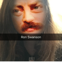 Accurate: Ron Swanson Accurate