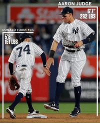 """Baseball is for all types of people: RONALD TORRE YES  5'8""""  151 LBS  AARON JUDGE  6'7""""  282 LBS Baseball is for all types of people"""