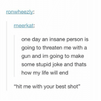 """Hit me with your best shot 😂😂 https://t.co/fFmqxqTdf6: ronwheezly:  rneerkat  one day an insane person is  going to threaten me with a  gun and im going to make  some stupid joke and thats  how my life will end  35  """"hit me with your best shot"""" Hit me with your best shot 😂😂 https://t.co/fFmqxqTdf6"""