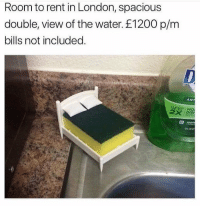Apple, Memes, and Dish: Room to rent in London, spacious  double, view of the water. £1200 p/m  bills not included.  ANT  DISH  apple Actually what it is like too 😵