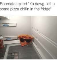 "Pizza, Yo, and Fridge: Roomate texted ""Yo dawg, left u  some pizza chillin in the fridge""  SpoceSmart"