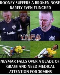 Blade, Memes, and Neymar: ROONEY SUFFERS A BROKEN NOSE  BARELY EVEN FLINCHED  leidos  wwwNFA.NST  NEYMAR FALLS OVER A BLADE OF  GRASS AND NEED MEDICAL  ATTENTION FOR 30MINS True story.