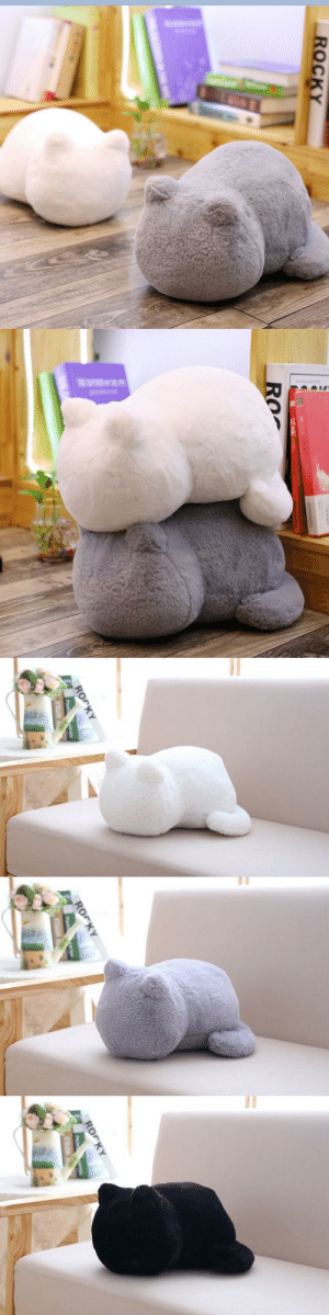 Cute, Family, and Friends: ROrKY   ROrKY cute-aesthetics-things: Cute and Adorable Sitting Cat Plush Cushion. Ultra Comfy and perfect for resting your head on. A neat and adorable gift for your friends and family! = GET YOURS HERE =