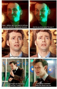 Just Wanted To Tell You: Rose... before I go, I just want to tell you  you were fantastic. Absolutely fantastic.  And do you know what? So was I!  t will not forget one line of this  Not one day. I swear  l will always remember  when the Doctor was me.