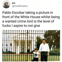 Crime, Pablo Escobar, and Weed: @roseification  Pablo Escobar taking a picture in  front of the White House whilst being  a wanted crime lord is the level of  fucks I aspire to not give 😮