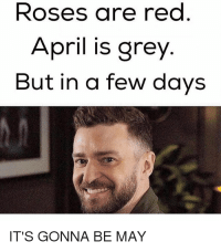 me_irl: Roses are rec  April is grey  But in a few davs  IT'S GONNA BE MAY me_irl