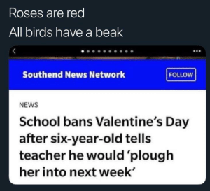 six year old: Roses are red  All birds have a beak  Southend News Network  FOLLOW  NEWS  School bans Valentine's Day  after six-year-old tells  teacher he would 'plough  her into next week'